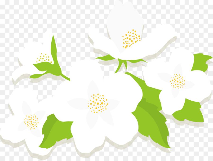 Jasmine Flower Euclidean Vector