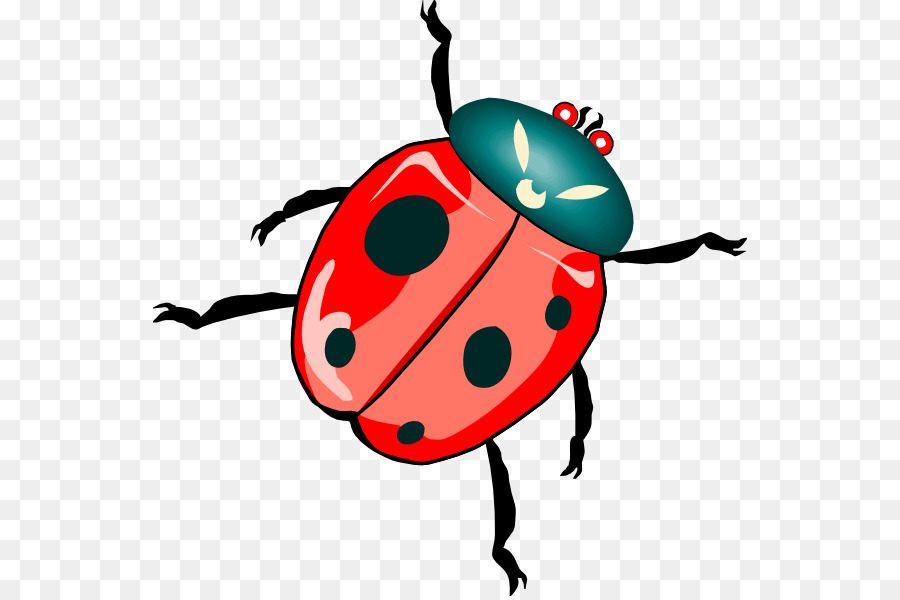 beetle ladybird free content clip art dead insects cliparts png rh kisspng com insects clipart images clip art insects and bugs