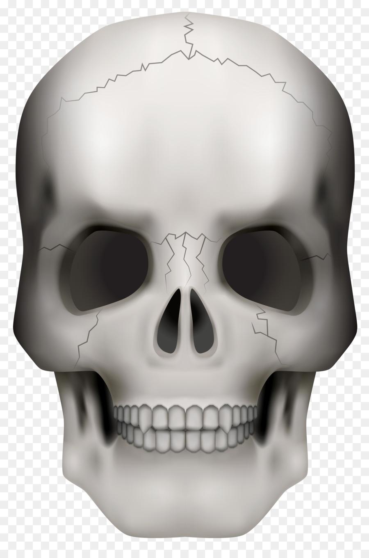 Skull Skeleton Clip art - Skull Frame Cliparts png download - 4273 ...