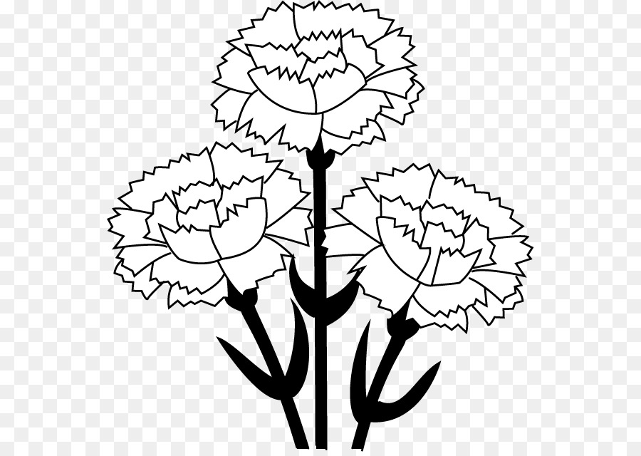 carnation free content clip art carnation cliparts png download rh kisspng com carnation clipart black and white pink carnation clipart