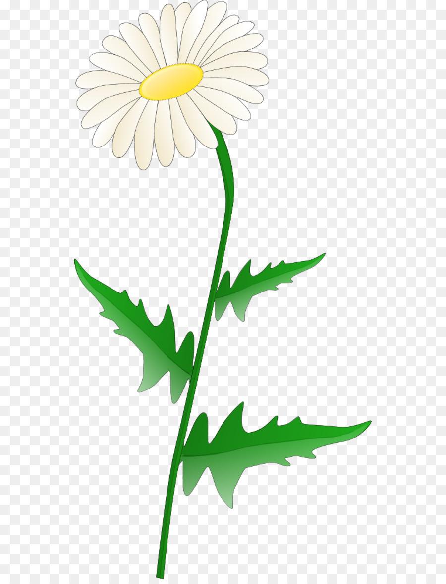 Free content common daisy clip art daisy flower clipart png free content common daisy clip art daisy flower clipart izmirmasajfo