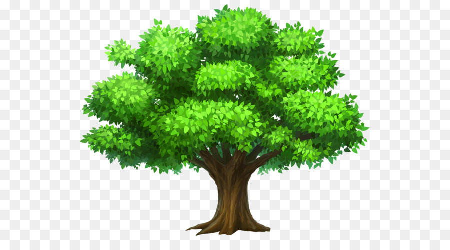 tree free content clip art summer tree cliparts png download 600