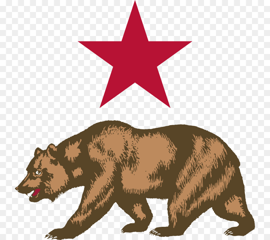 California bear. Png download free transparent