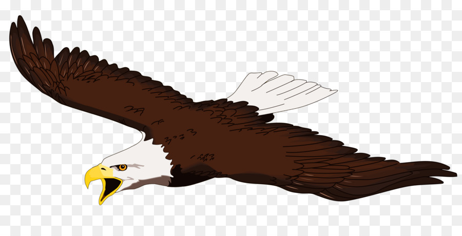 bald eagle white tailed eagle free content clip art eagle flying rh kisspng com flying eagle images clip art free flying eagle clipart