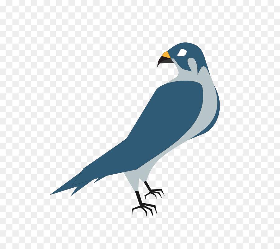 hawk free content clip art free hawk clipart png download 759 rh kisspng com free hawk clipart images Hawk Mascot