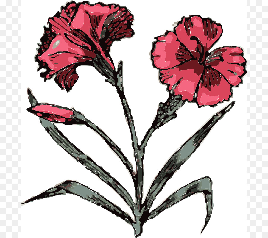 8f6ac509d Carnation Scalable Vector Graphics Free content Clip art - Carnation ...