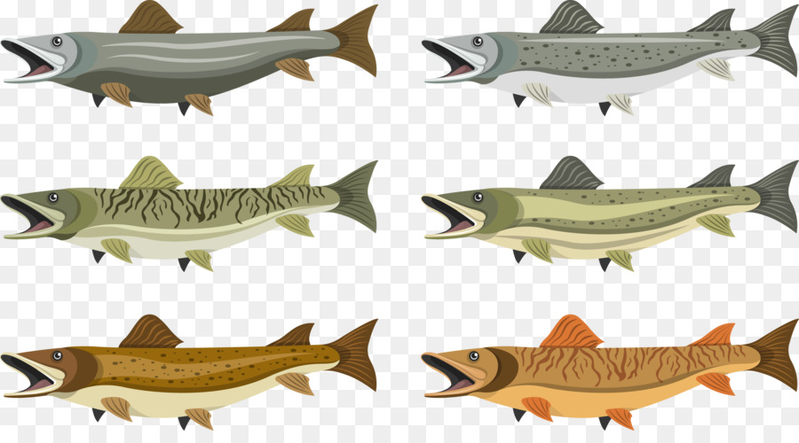 El norte de la Pesca del lucio - Colección de peces Formatos De ...
