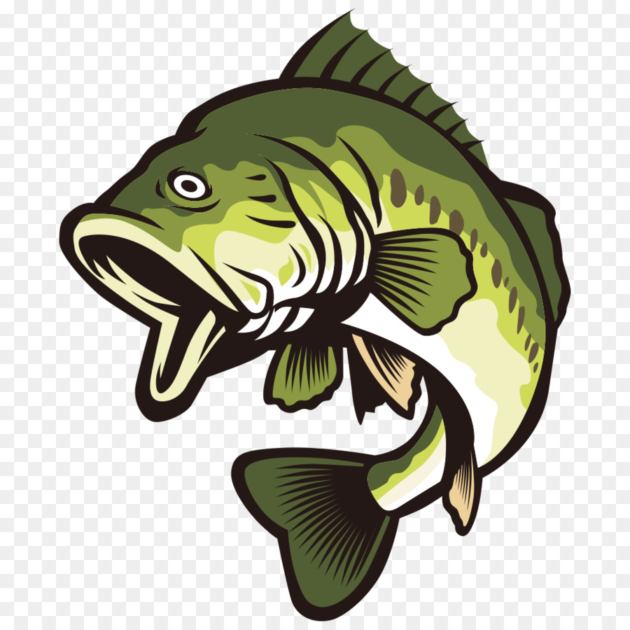 largemouth bass clip art open your mouth and green fish png rh kisspng com Largemouth Bass Wallpaper Largemouth Bass Jumping