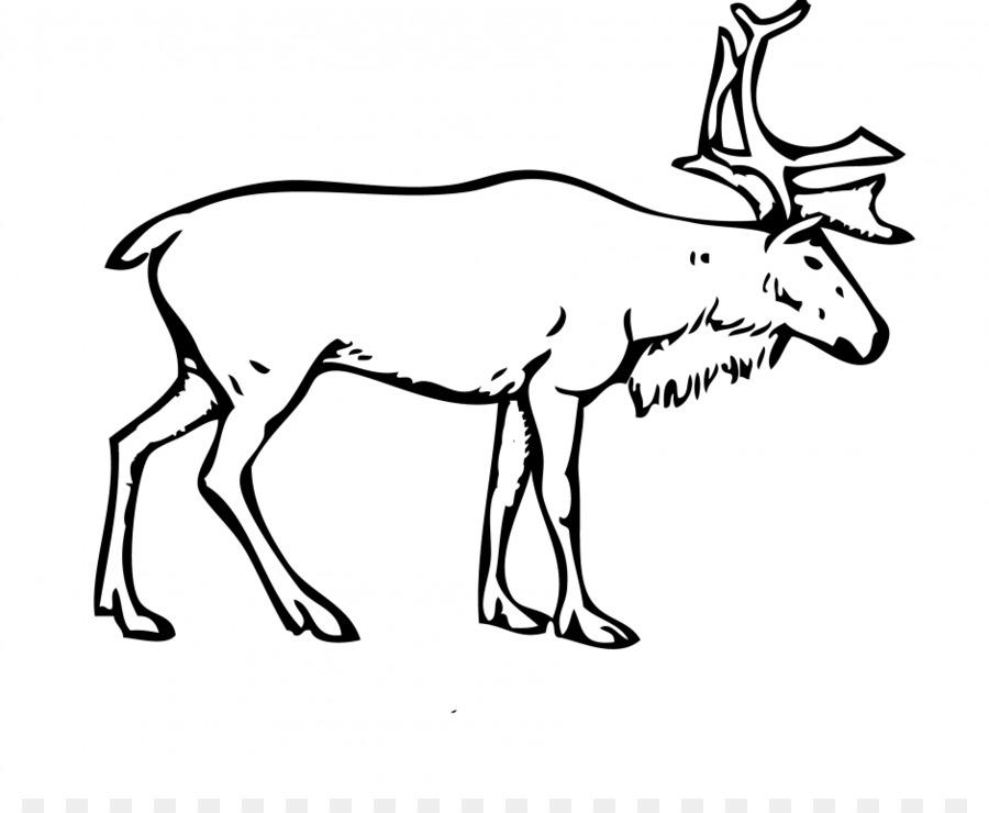 Bosques finlandeses renos Porcupine caribou Ártico Boreal renos ...