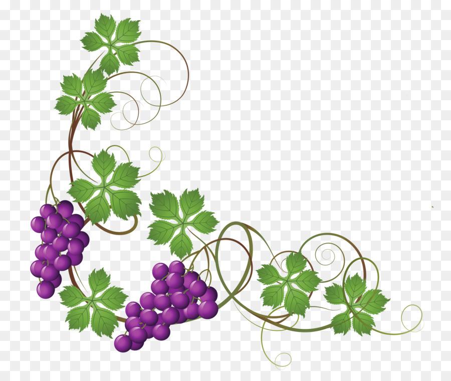 common grape vine wine grape leaves clip art vine cliparts png rh kisspng com grapevine clip art borders free grape vine clip art images