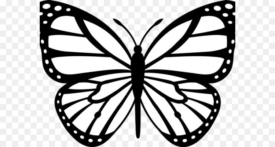 Flower black and white butterfly. Png download free transparent