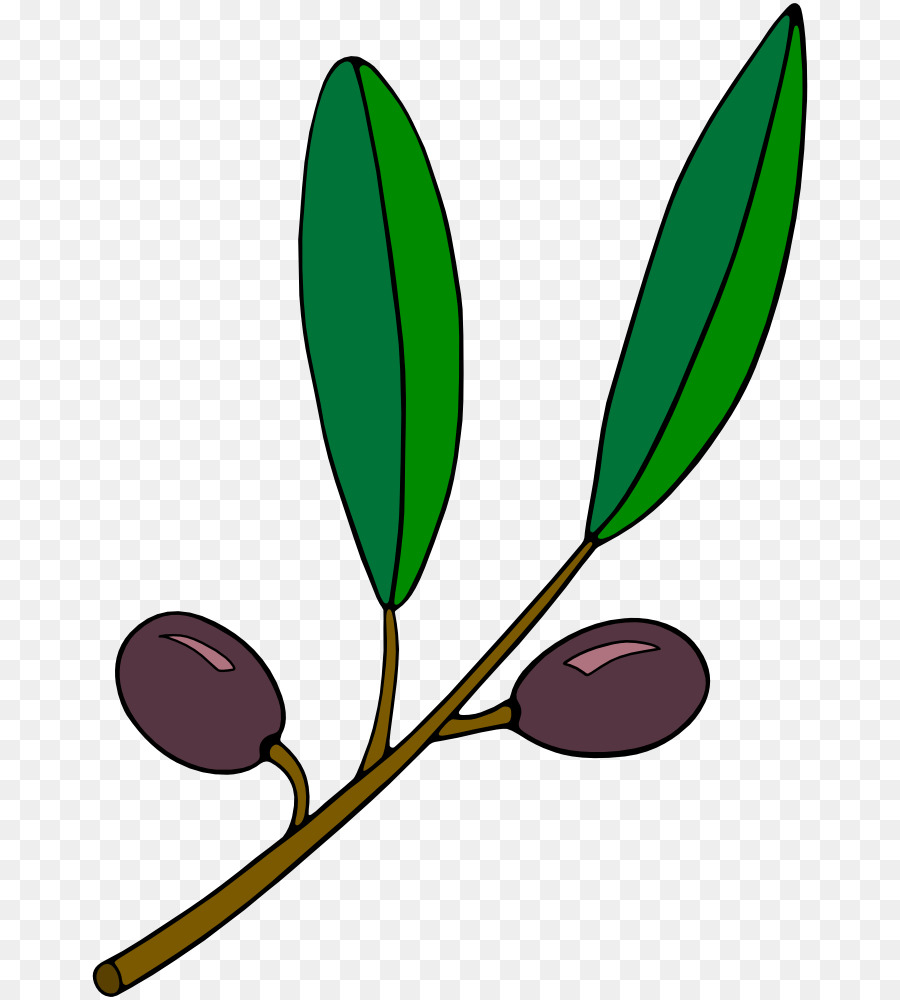 olive branch computer icons clip art grapevine clipart png rh kisspng com olive clipart images clipart olive branch