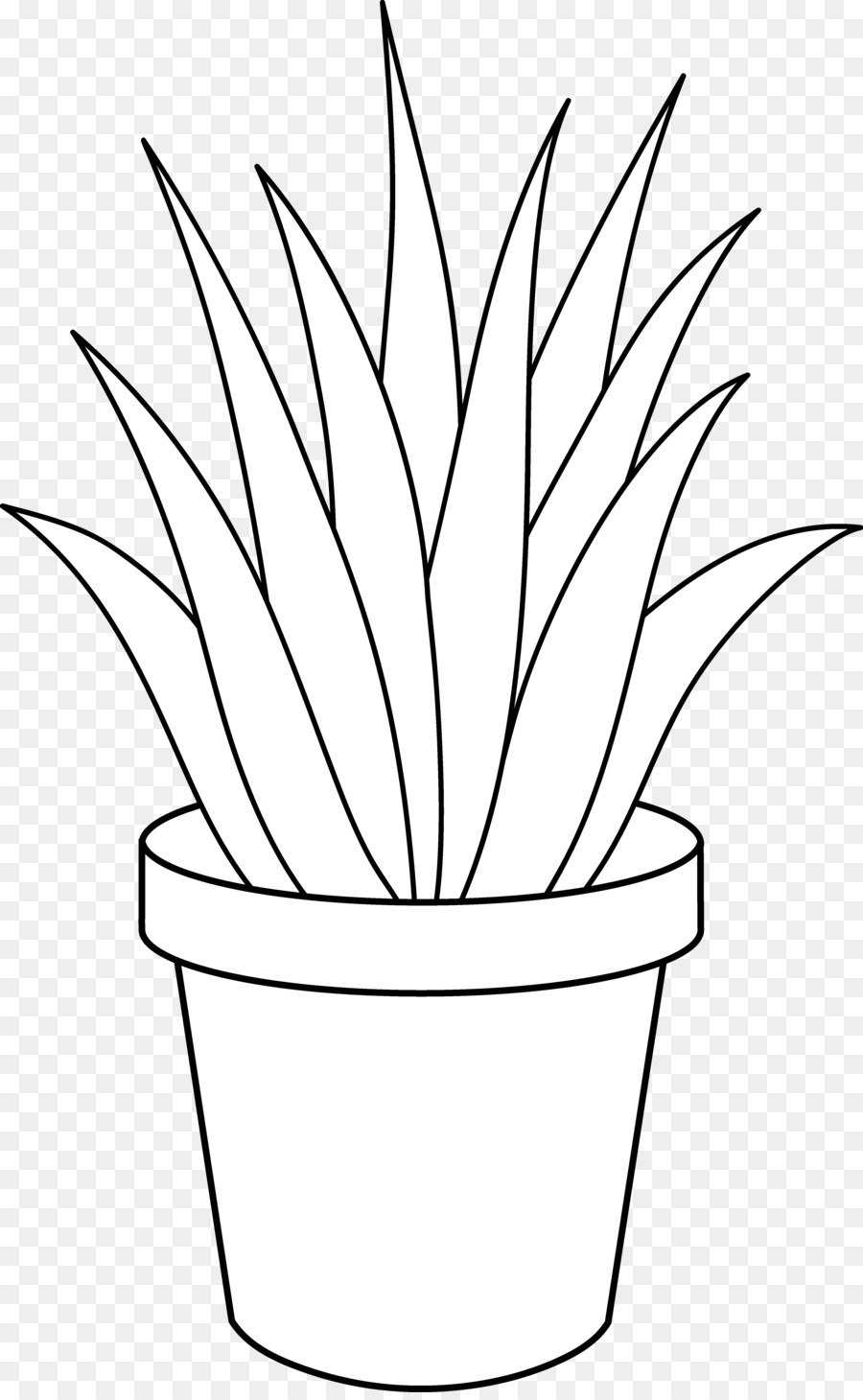 Plant white. Black and flower png