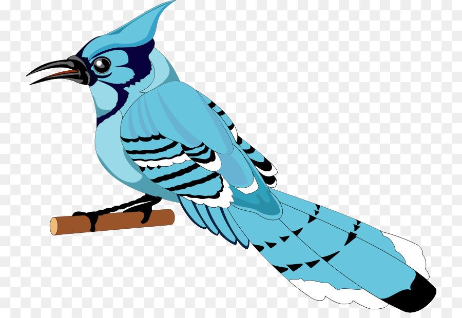 toronto blue jays bird clip art free bird vector png download rh kisspng com blue jay clip art free toronto blue jay clipart