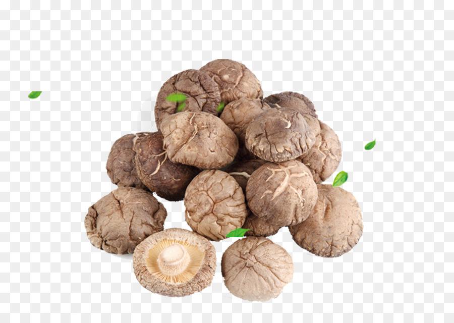 China Edible Mushroom png download - 800*622 - Free Transparent