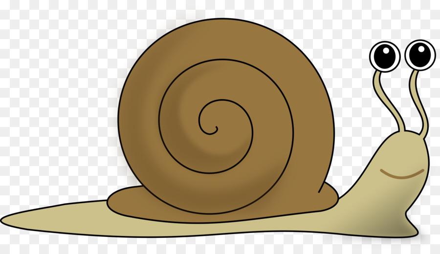 snail clip art ag cliparts png download 2400 1357 free rh kisspng com clip art nails clip art nail polish bottle
