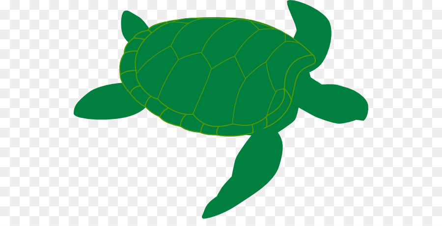 green sea turtle clip art sea turtles cliparts png download 600 rh kisspng com