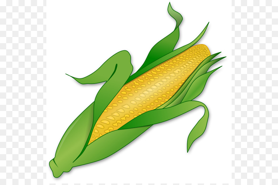corn on the cob candy corn maize sweet corn clip art okra cliparts rh kisspng com corn on the cob clip art black and white corn on the cob clip art free