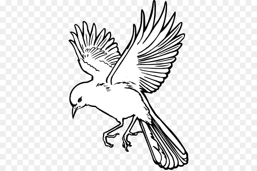 Birdwatching Flight Drawing Clip Art Flying Bird Drawing Png