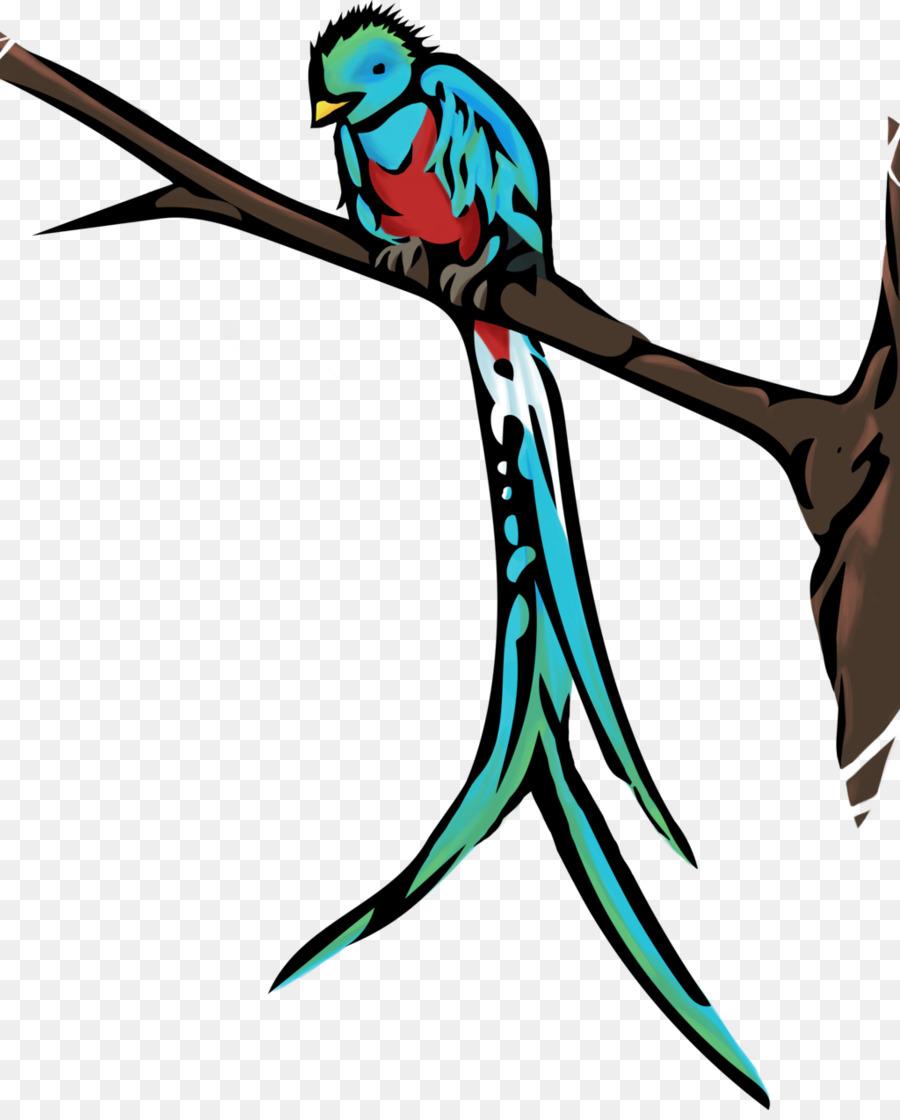 Guatemala Bird Resplendent quetzal Clip art - Cute Quetzal ...
