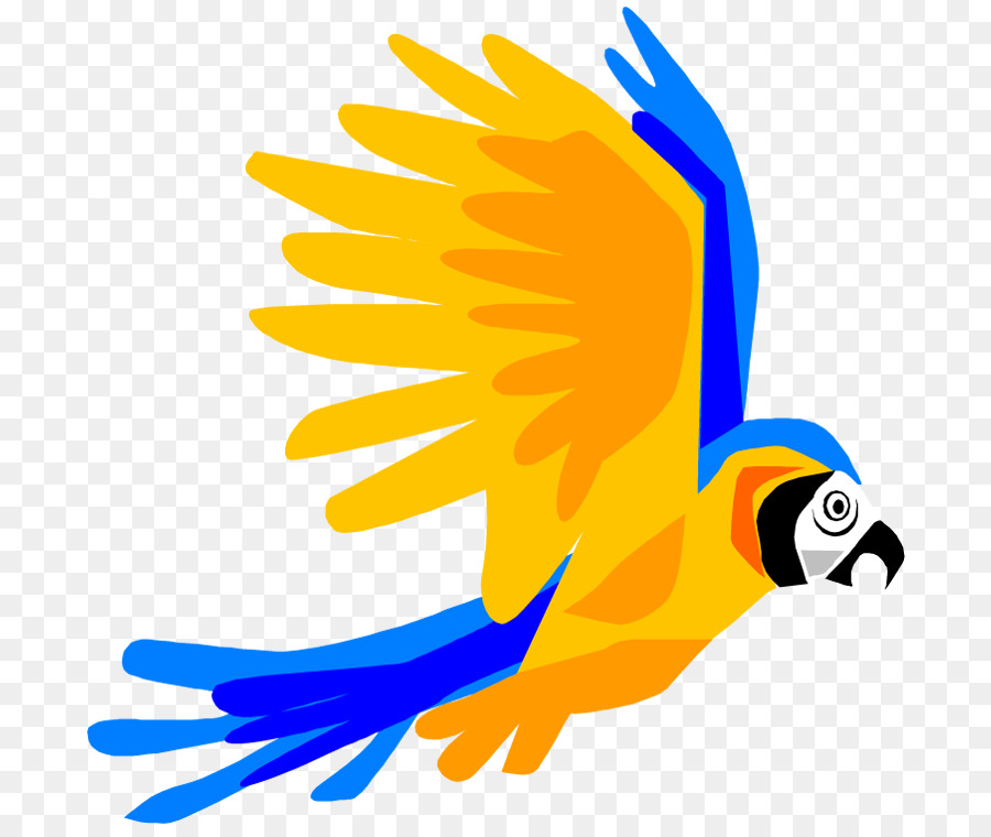 parrot bird flight macaw clip art cartoon pictures of parrots png rh kisspng com macaw clipart black and white blue macaw clipart