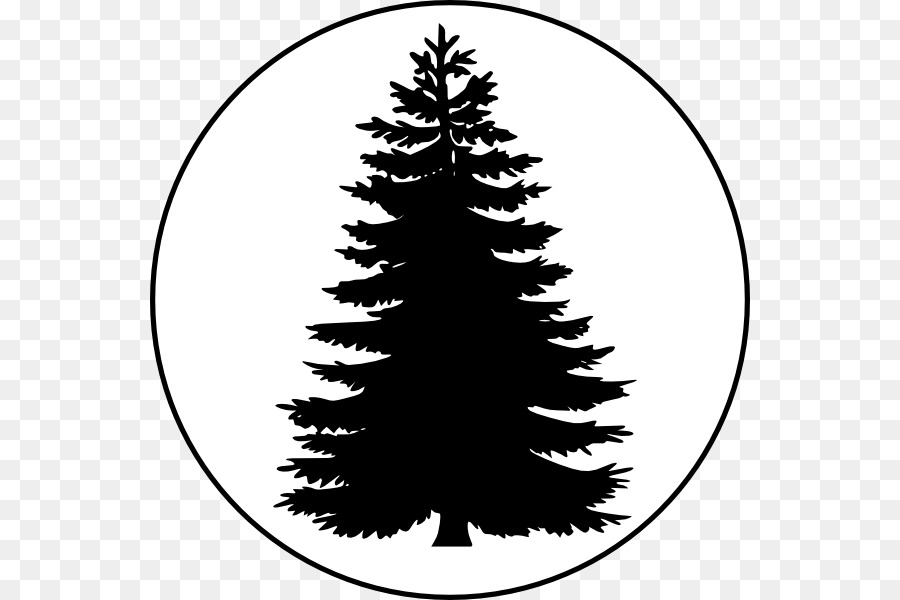 pine tree conifers clip art evergreen tree outline png download rh kisspng com evergreen clipart free evergreen clipart free