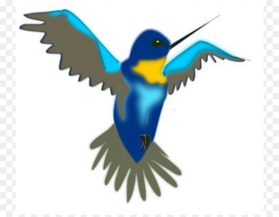 hummingbird cartoon clip art free hummingbird clipart png download rh kisspng com Free Fall Clip Art hummingbird clipart free download