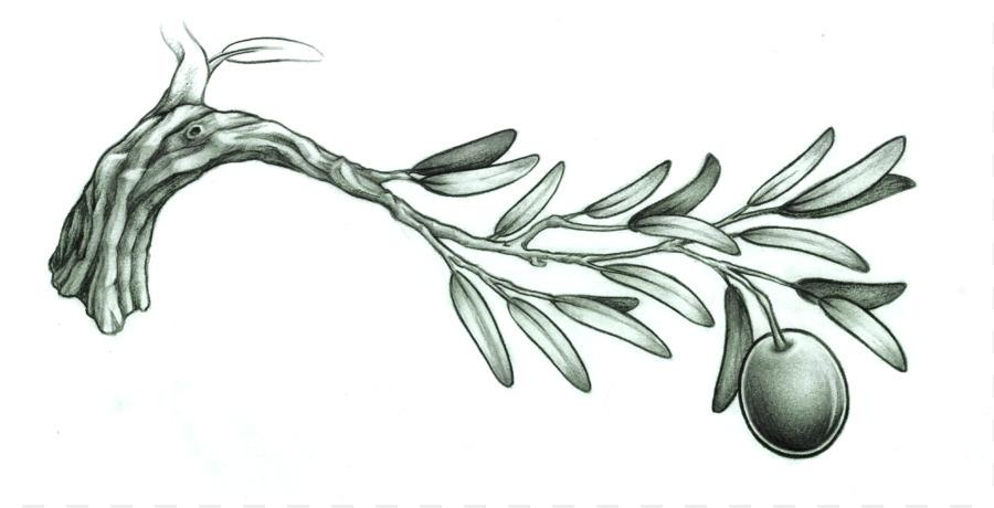 olive branch tattoo drawing photo of olive branch 899 457 transprent png free download line. Black Bedroom Furniture Sets. Home Design Ideas