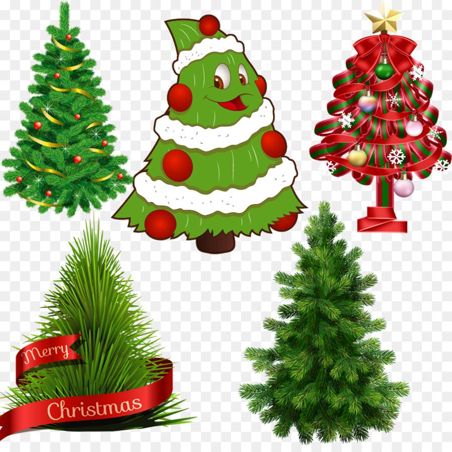 Scots pine Tree Fir Norfolk Island pine - Cute Christmas Tree png ...