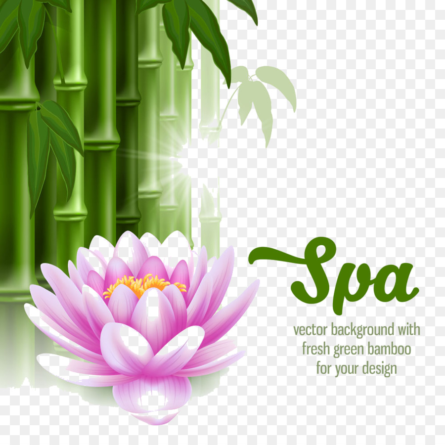 Spa stone massage clip art hl bamboo ago png download 10001000 spa stone massage clip art hl bamboo ago izmirmasajfo