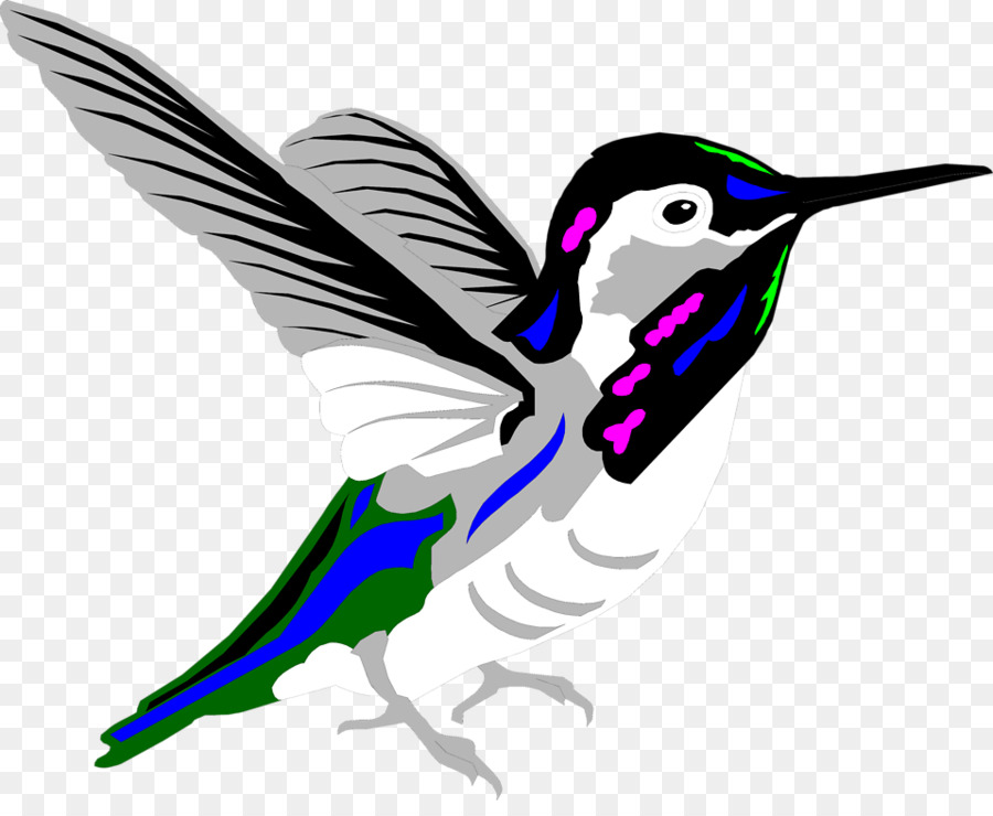 hummingbird animation clip art free hummingbird clipart png rh kisspng com
