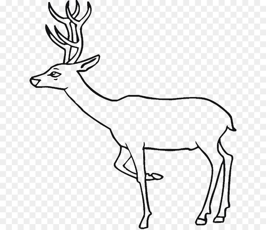 Elk Deer Train Coloring book Clip art - Train Drawings For Kids png ...