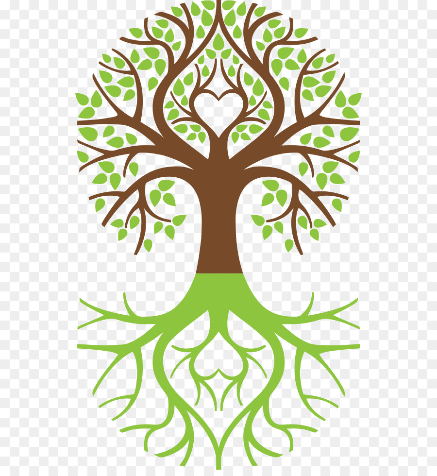 Tree Of Life Symbol Weeping Willow Arborvitae Happiness Images Png