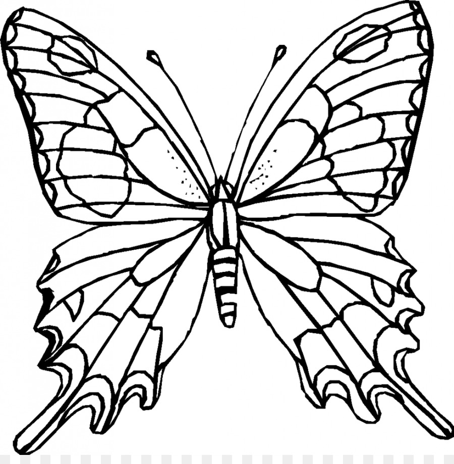 Monarch butterfly Outline Coloring book Clip art - black and white ...