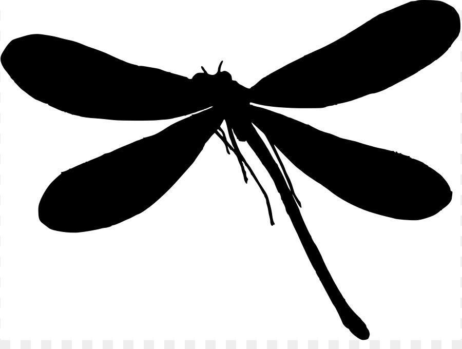 silhouette dragonfly clip art dragonfly graphics png download