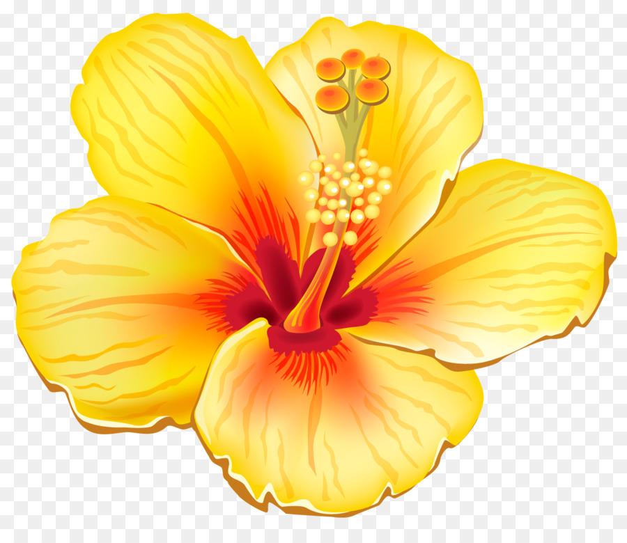 flower clip art tropical flowers cliparts png download 1322 1125 rh kisspng com clipart tropical flowers animated tropical flowers clip art free