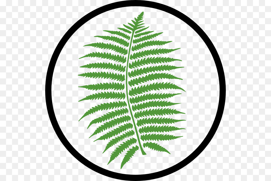 fern leaf clip art appropriate cliparts png download 600 600 rh kisspng com fern clipart free fern clipart black and white