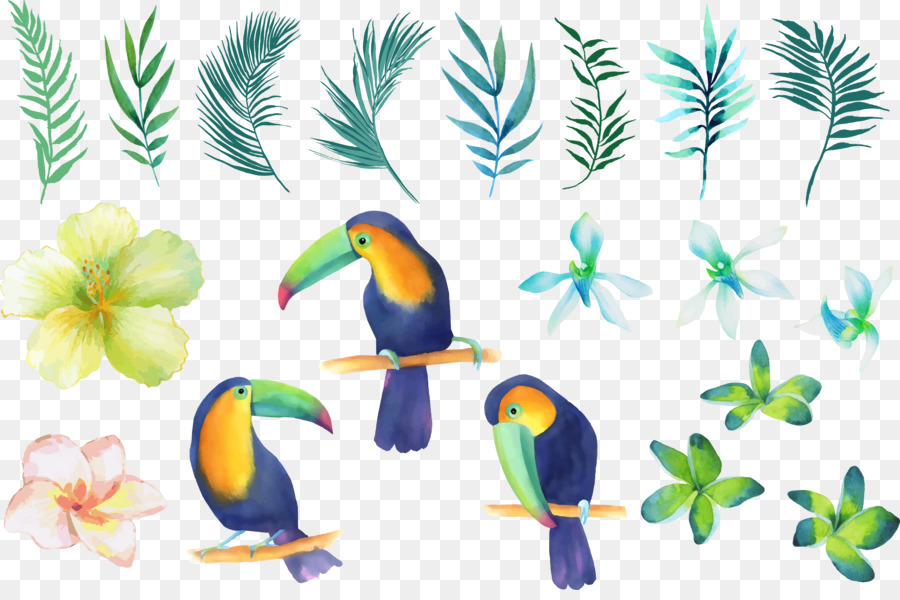 Parrot Beak Watercolor Painting Clip Art   Small Fresh Hand Painted  Watercolor Parrot Bird