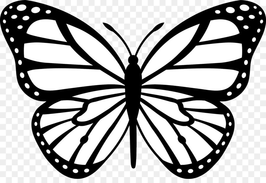 La mariposa monarca de Insectos en blanco y Negro imágenes ...
