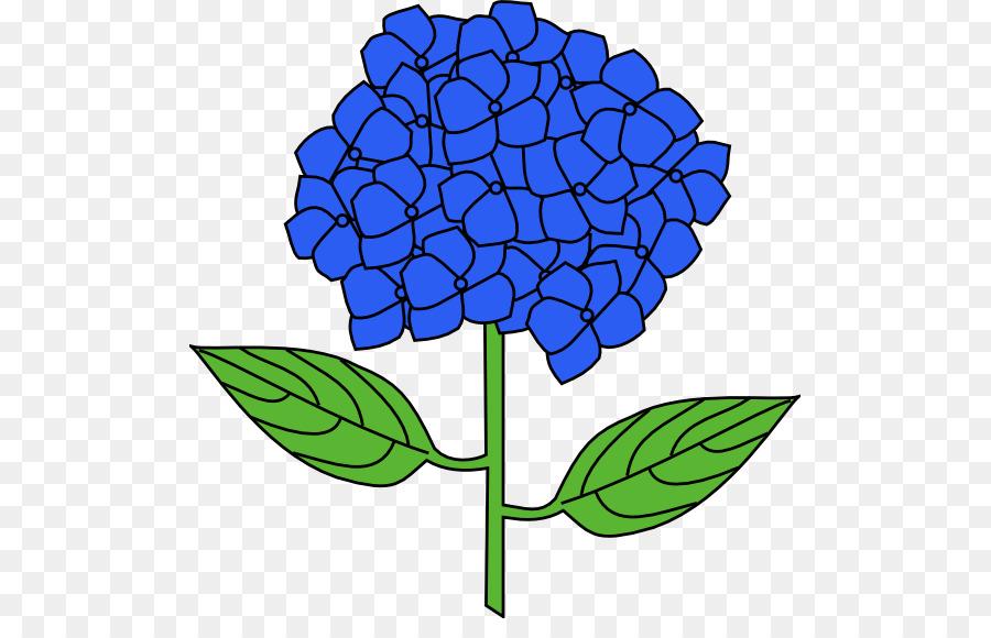 french hydrangea flower drawing clip art hydrangea cliparts png rh kisspng com clipart hydrangea images clipart hydrangea images