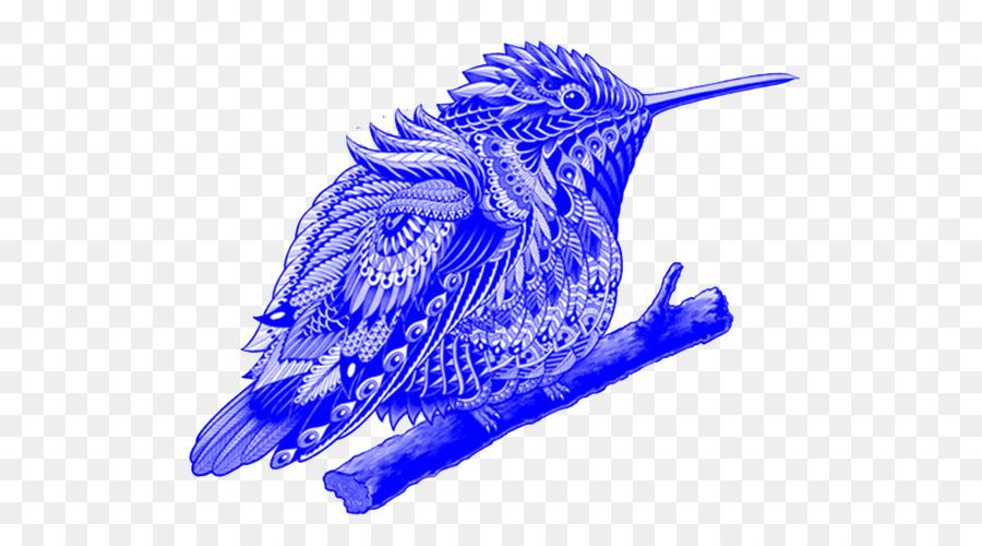 Hummingbird Drawing png download - 844*500 - Free