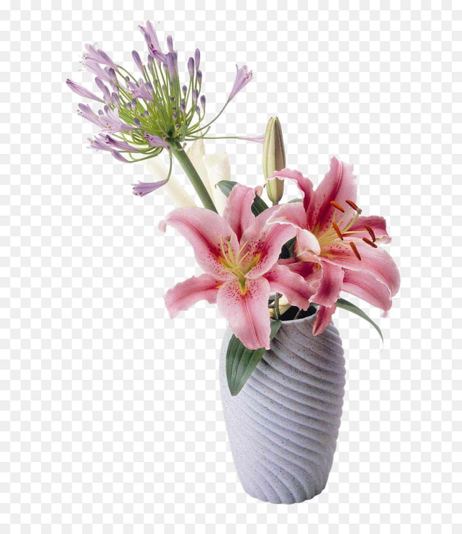 Flower Lilium Drawing Table Lily Flower Picture Material Png