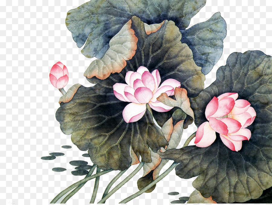 China Flower Chinese Painting Chinese Art Lotus Png Download