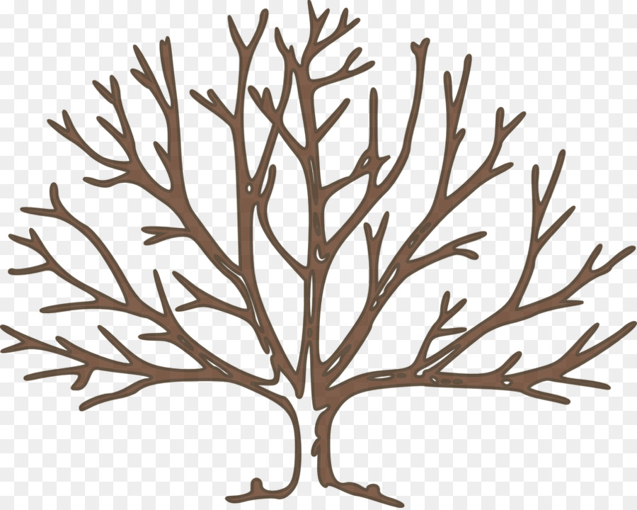 tree free content clip art winter trees png download 904 720 rh kisspng com winter tree silhouette clip art bare winter tree clip art