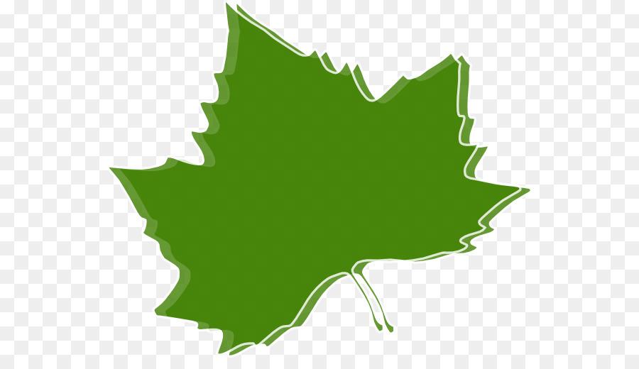 Herbst Blatt Farbe Herbst Blatt Farbe Clip Art Kastanien