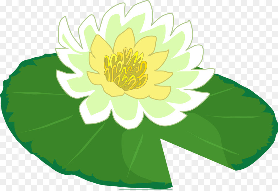 water lily frog clip art lily pad png download 1501 1027 free rh kisspng com lily pad clip art black and white frog on a lily pad clipart