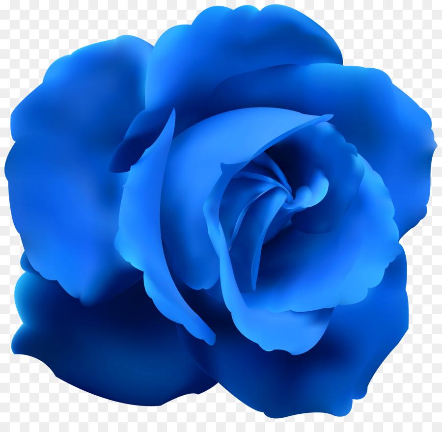 Blue Rose Flower Clip Art Blue Rose Cliparts Png Download 6000