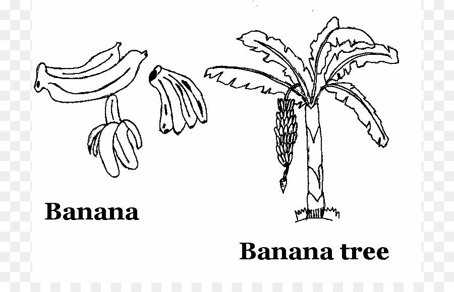 Banana split Dibujo de libro para Colorear de Frutas - Dibujo De ...