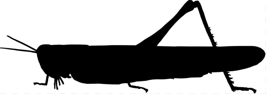 jiminy cricket beetle silhouette clip art grasshoppers cliparts rh kisspng com