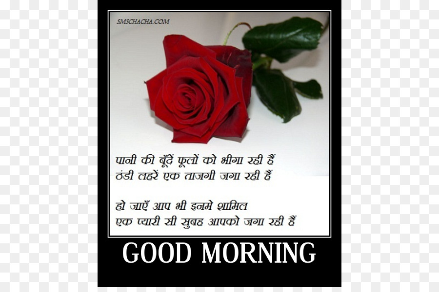 Good morning whatsapp image hindi download